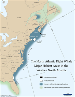 right whale range, western North Atlantic